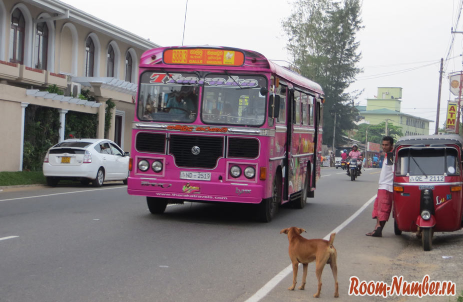 аэропорт Тангалле на автобусе или на такси