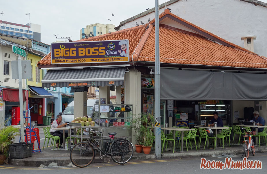 indiiskaya-ylisa-v-singapure-7