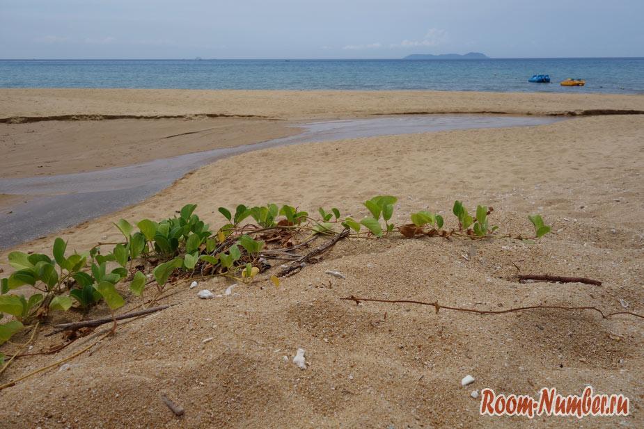 otel-i-plazh-berdjaya-na-tiomane-20