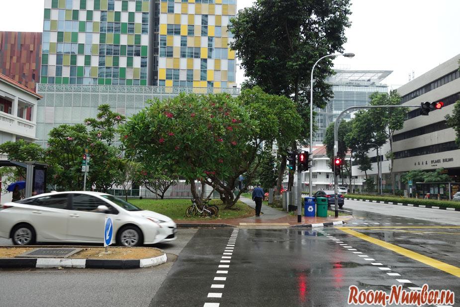 пешеходный переход и светофор в сингапуре