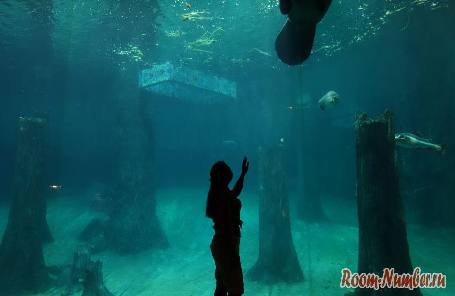 zoopark-v-singapure-22