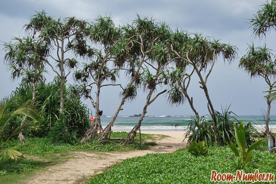 Бентота, Шри Ланка. Пляж плоский как блин