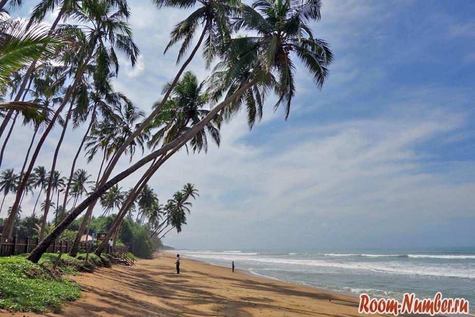 Ваддува Шри Ланка