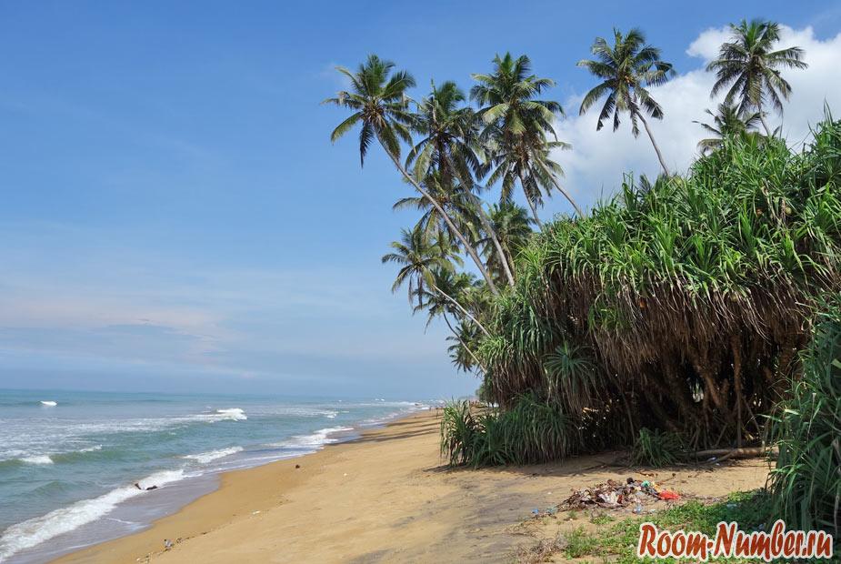 пляж wadduwa шри ланка