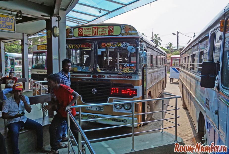 Colombo-Pinawalla-1