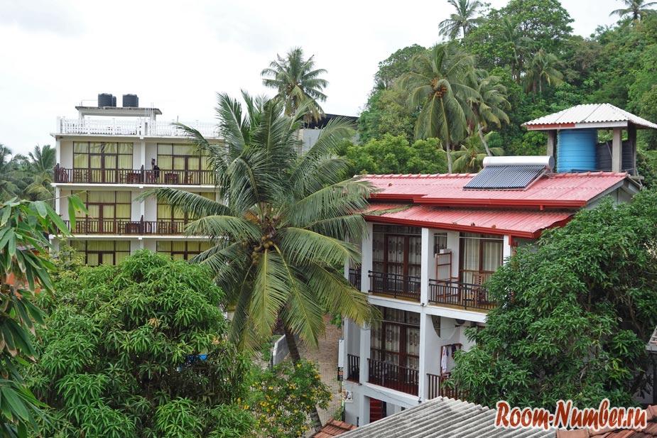 Отели в Мириссе Шри Ланка