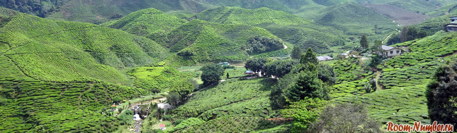 Отели в Шри Ланке центральной части острова