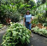 botanicheskiy-sad-v-singapure-14