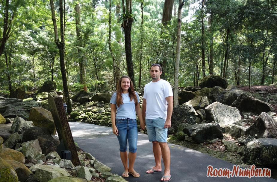 Ботанический сад Сингапура. Фото и как добраться