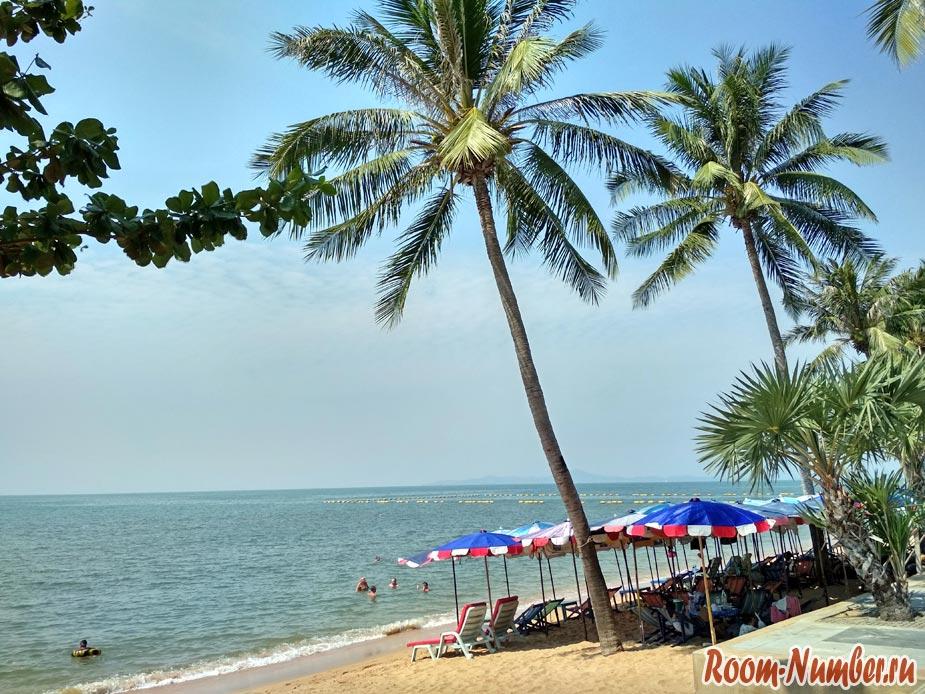 Пальмы на пляже Джомтьен в Паттайе