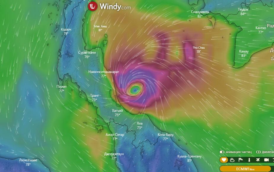 taifun-2019
