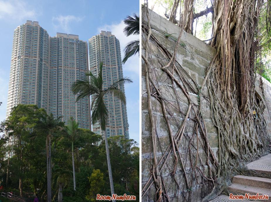 kowloon-park-9