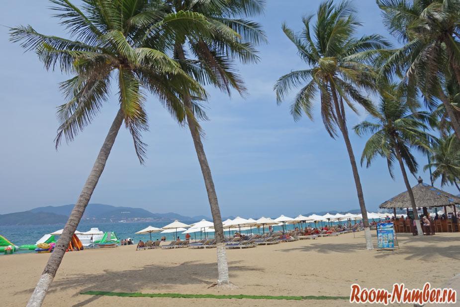 пальмы на пляже нячанга