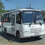 doehat-v-partenit-150