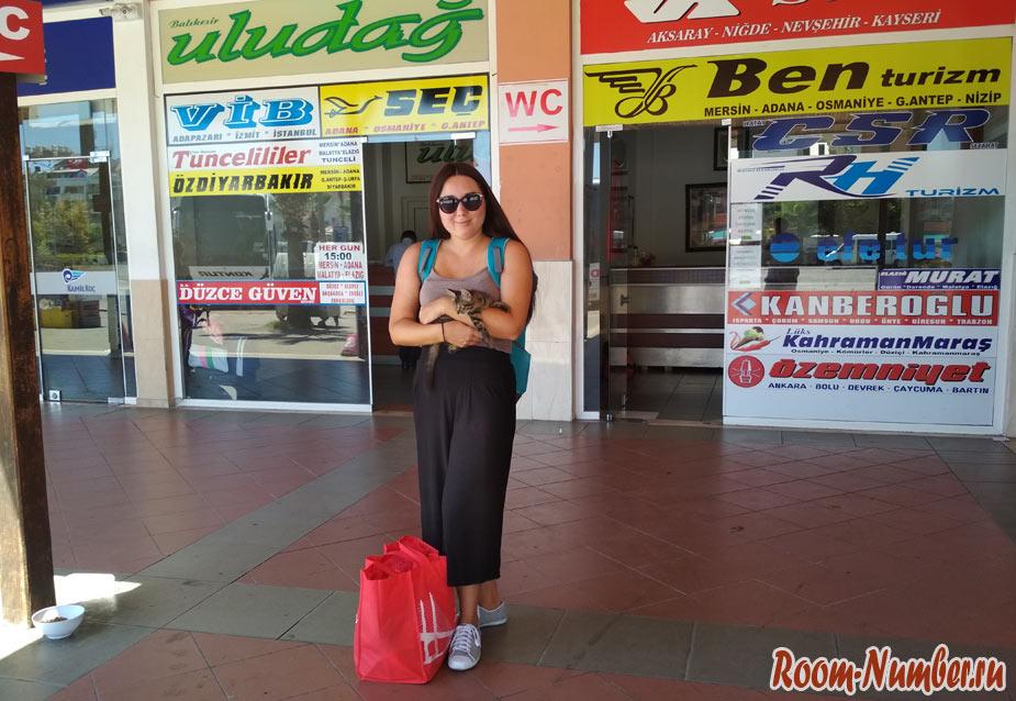 Как добраться из Алании в Сиде. Опыт путешествия на турецком автобусе
