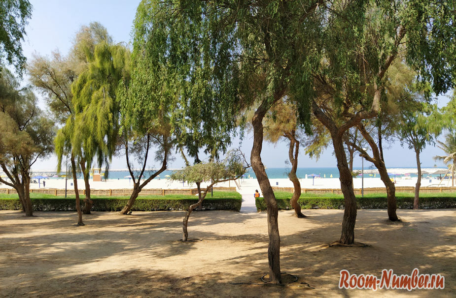 plazh-al-mamzar-2