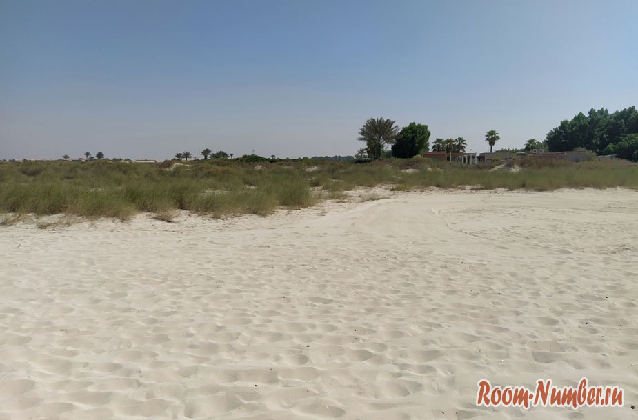 plazh-sadiat-v-abu-dabi-2