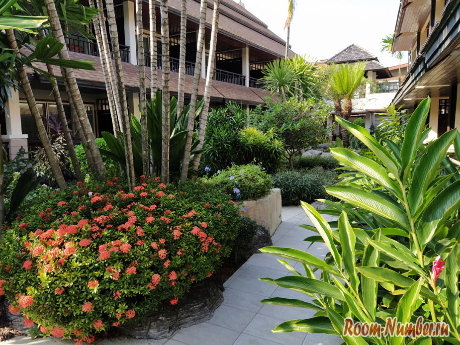 nash-otel-na-pi-pi-banyan-villa-4