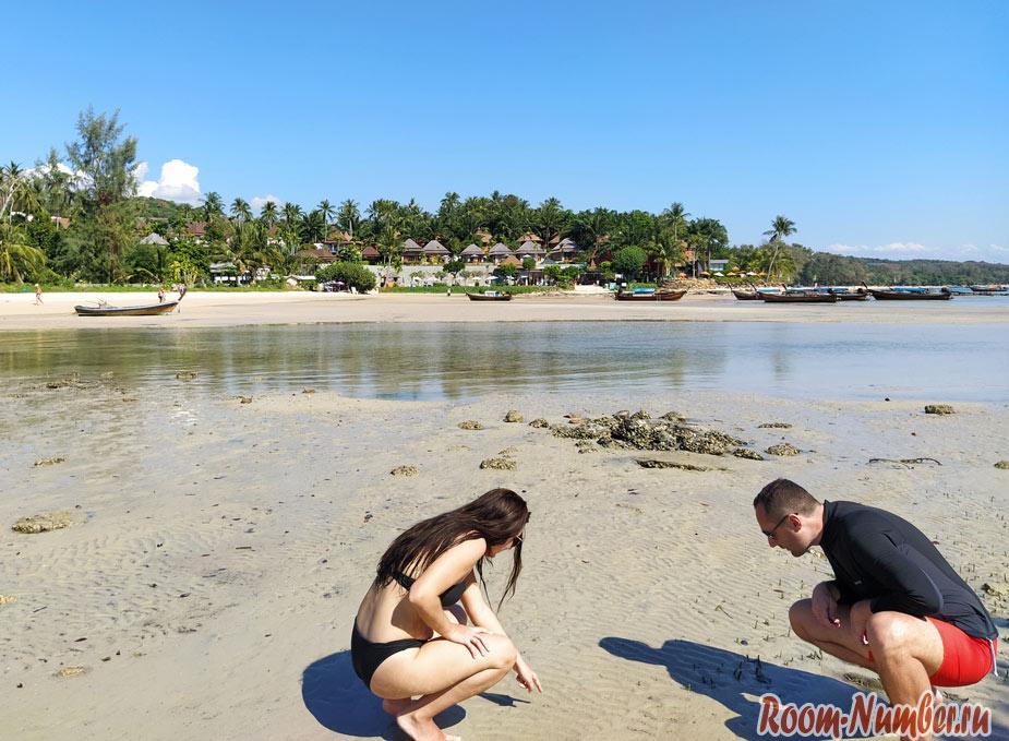 plazh-klong-muang-15667