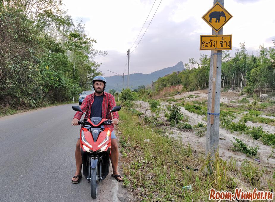 motorbike-krabi-1