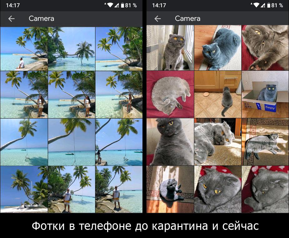 Карантин и самоизоляция в Москве: 2 месяца не выходили на улицу