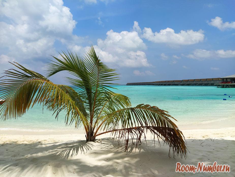 ostrov-centara-na-maldivah-30