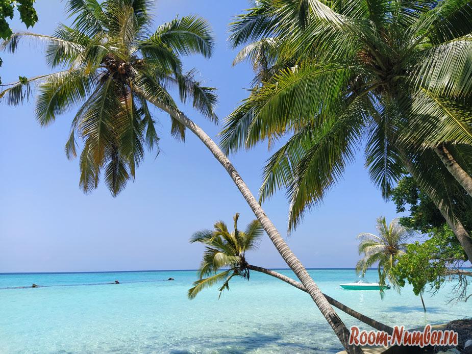 maldives-samostoyatelno-11