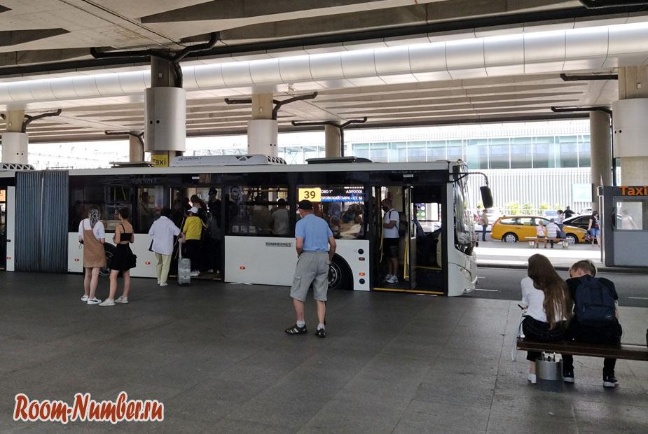 pulkovo-piter-avtobus-39
